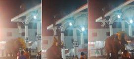 ഏറ്റുമാനൂര് മഹാദേവ ക്ഷേത്രത്തില് ആറാട്ടിനിടെ ആനയിടഞ്ഞു; ശാന്തിക്കാരനെ രക്ഷിച്ചത് സാഹസികമായി; വീഡിയോ കാണാം