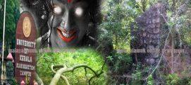 കാര്യവട്ടം ക്യാമ്പസ്: ഹൈമാവതിക്കുളവും യക്ഷികഥകളും ! പൊളിച്ചടുക്കാൻ ഒരുങ്ങി വിദ്യാർത്ഥി യൂണിയൻ, പിന്തുണയുമായി മന്ത്രി കടകംപള്ളി സുരേന്ദ്രനും