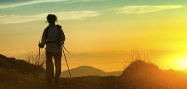 തീര്ത്ഥാടനം – ബീന റോയ് എഴുതിയ കവിത