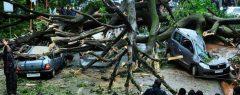 സംസ്ഥാനത്ത് കനത്ത മഴ തുടരുന്നു; വ്യാപകനാശം, ആലപ്പുഴയിൽ ഓടിക്കൊണ്ടിരുന്ന ട്രെയിന്റെ മുകളിൽ മരം വീണു……