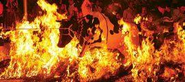 മകരസംക്രാന്തി ആഘോഷങ്ങളുടെ ഭാഗമായി പശുക്കളെ തീയിലൂടെ നടത്തി ക്രൂരത; പരമ്പാരഗത ആചാരത്തിനെതിരെ പ്രതിഷേധം, ഗോരക്ഷകർ എവിടെ ?