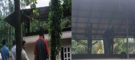 കോതമംഗലം പോത്താനിക്കാട് വീടിന്റെ ടെറസിന് മുകളില് യുവാവ് മരിച്ച നിലയിൽ; പ്രതി പിടിയിൽ