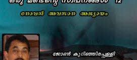 ഒരു മണ്ടൻ്റെ സ്വപ്നങ്ങൾ-12   : ജോൺ കുറിഞ്ഞിരപ്പള്ളി എഴുതിയ നോവൽ  അവസാന  അദ്ധ്യായം