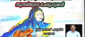 സുന്ദരിയുടെ ചെരുപ്പുകൾ  : റ്റിജി തോമസ്  എഴുതിയ ചെറുകഥ