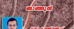 ഞാഞ്ഞൂൽ : രാജു കാഞ്ഞിരങ്ങാട് എഴുതിയ കവിത