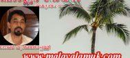 ബാംഗ്ലൂർ ഡേയ്സ് : ജോൺ കുറിഞ്ഞിരപ്പള്ളി എഴുതുന്ന  നോവൽ    പുനരാരംഭിക്കുന്നു . അധ്യായം 12