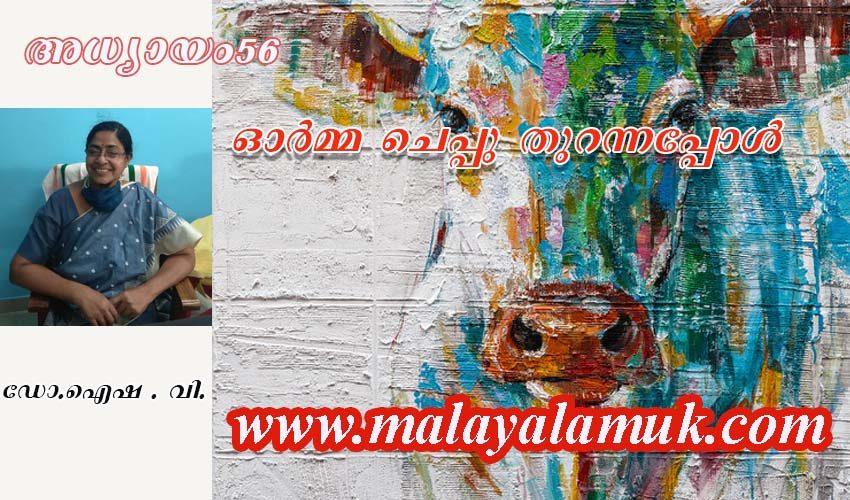 ഗോപരിപാലനം( അമ്മിണി) : ഓർമ്മചെപ്പു തുറന്നപ്പോൾ . ഡോ.ഐഷ . വി. എഴുതുന്ന ഓർമ്മക്കുറിപ്പുകൾ – അധ്യായം  56