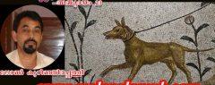ബാംഗ്ലൂർ ഡേയ്സ് : ജോൺ കുറിഞ്ഞിരപ്പള്ളി എഴുതുന്ന നോവൽ അധ്യായം 23